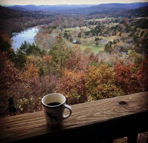 pet friendly eureka springs cabin rentals