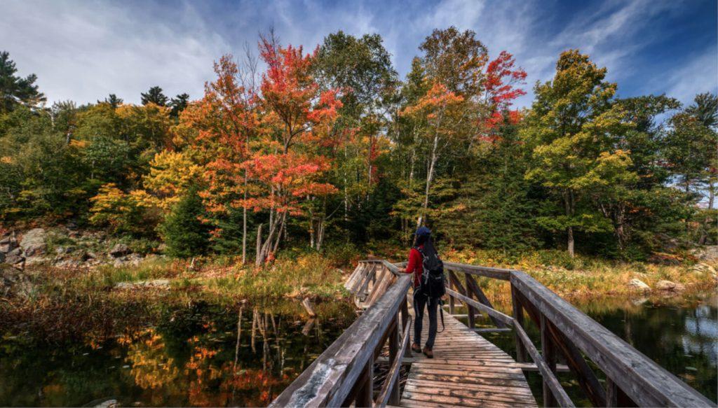 Fall foliage in Arkansas: Leaf peeping in Eureka Springs
