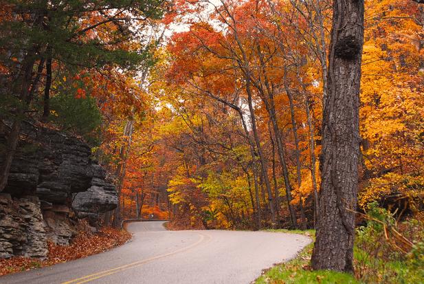 Arkansas Fall Foilage