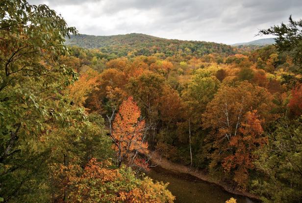 Fall foliage in the Ozark Mountains