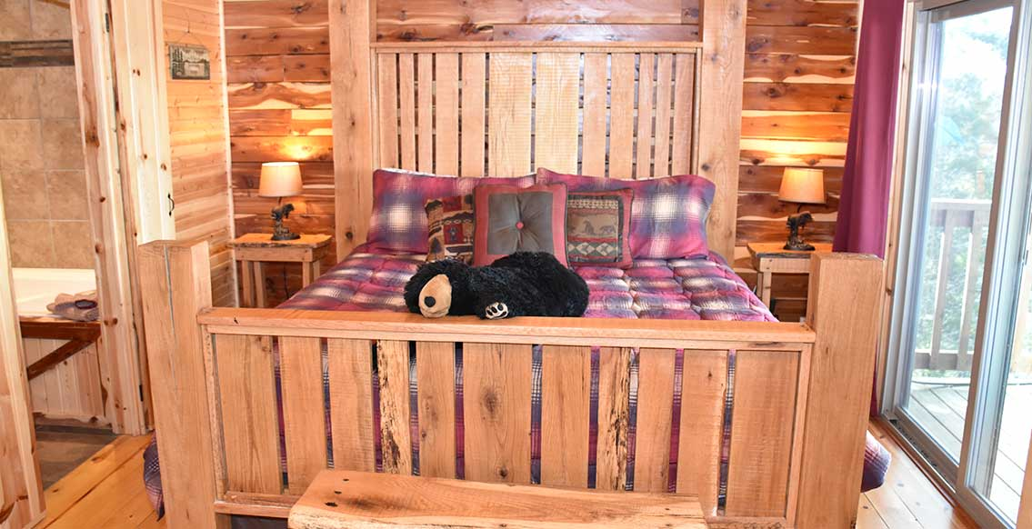Eureka Springs Cabin - The Bear's Den